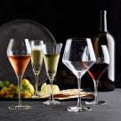 schott-zwiesel-pure-pinot-noir-glasses-set-of-6-c