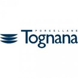 DV004-logo_tognana_270
