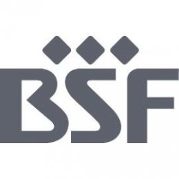 DV004-logo_BSF_Logo_vektor_270