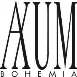 DV004-logo_axum_270