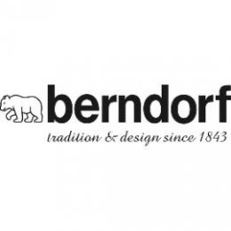 DV004-logo_berndorf_270