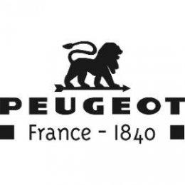 DV004-logo_Peugeot_270