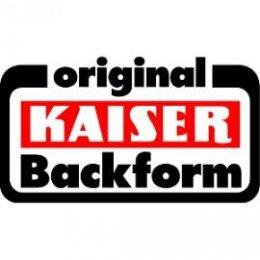 DV004-logo_kaiser_270